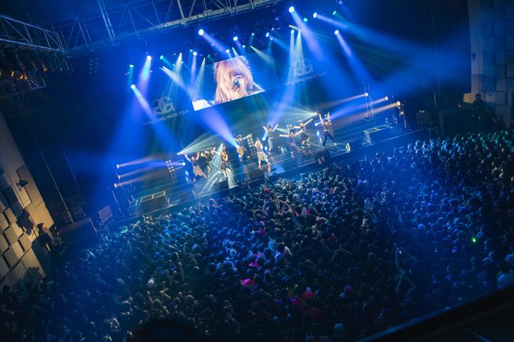 BiS<Going Going WACK TOUR>|なんばHatch(2019年2月3日)