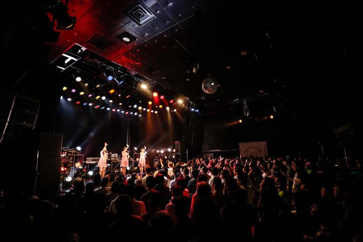 <kolme Live Museum 2019 -Hello kolme- Final>|渋谷 WWW X(2019年3月30日)