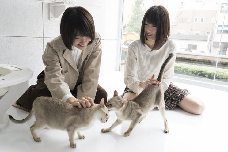HARUKA、権田夏海